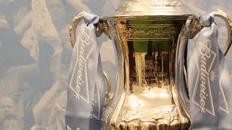 Budwieser FA cup pic