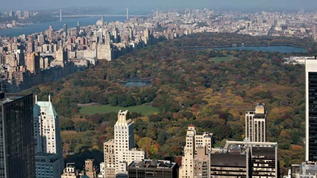 A bird's eye view of New York's Central Park seen from Rockefeller Center's Top of the Rock observatory