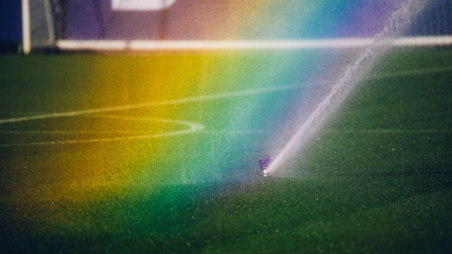 OVER THE RAINBOW : Some photo opportunities are just too good to turn down