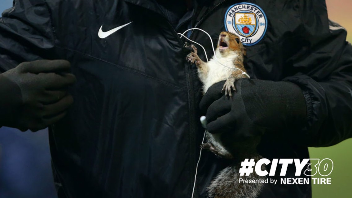 #City30: Nice one squirrel!