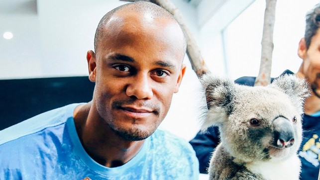 FURRY FRIEND : Kompany and a koala!