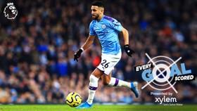 Riyad Mahrez: Every goal