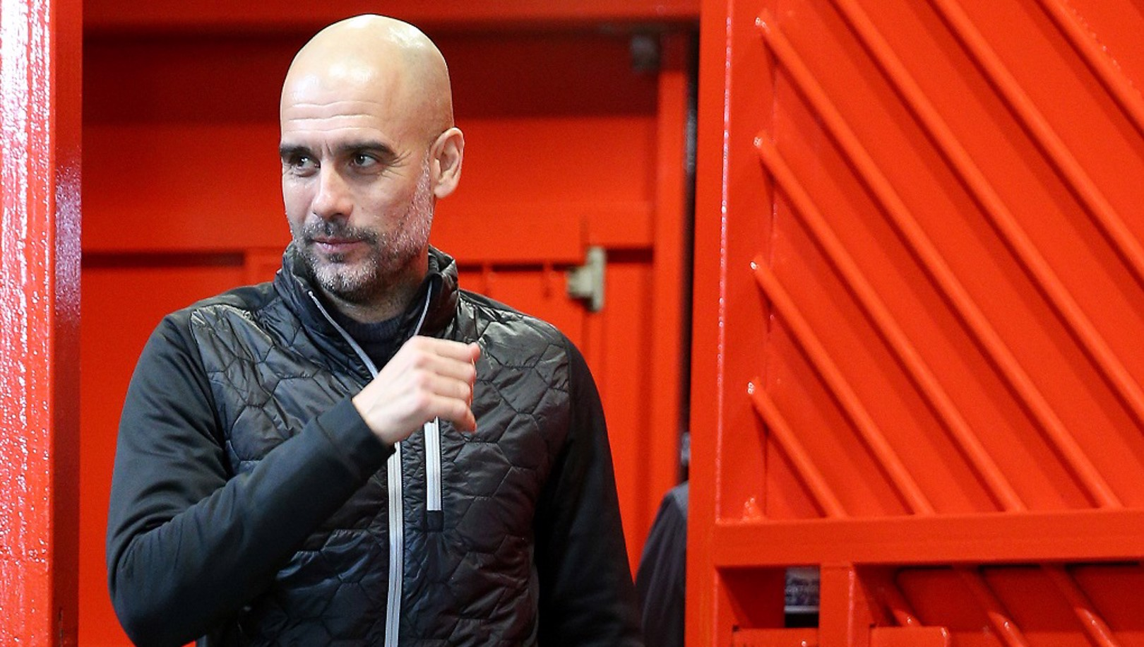 BOSS: Pep enjoyed the trip across the city....