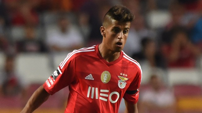 EARLY DAYS : His professional career began with Benfica, whose academy he joined in 2007.
